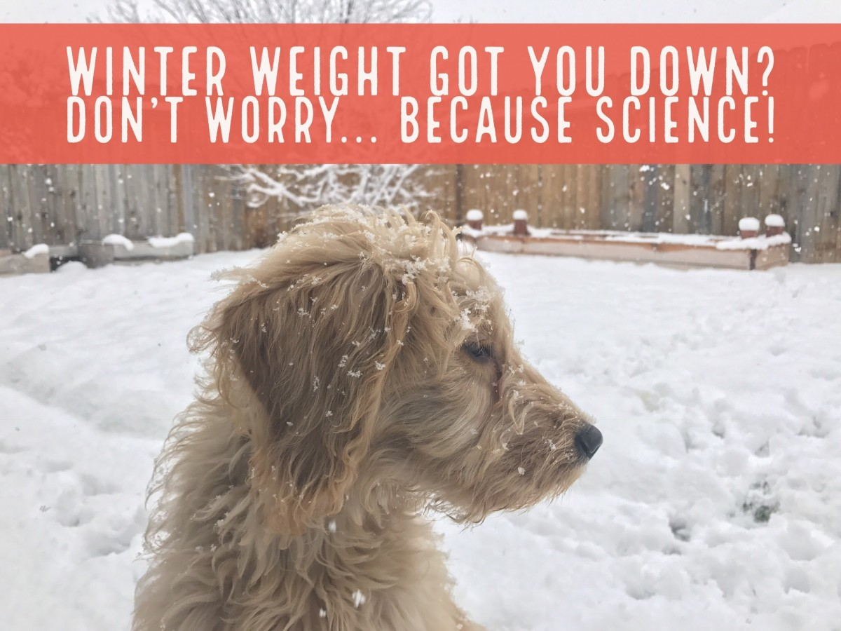 Winter Weight Gain