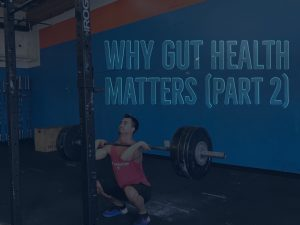 Why Gut Health Matters Part 2