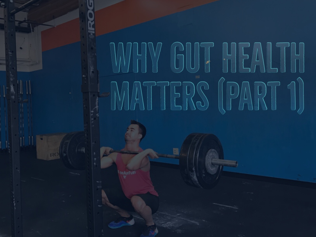 Why Gut Health Matters Part 1