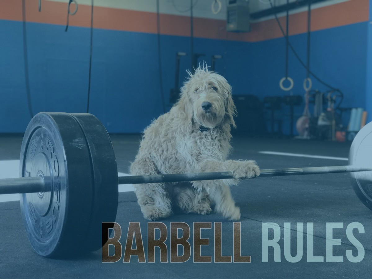 Barbell Rules